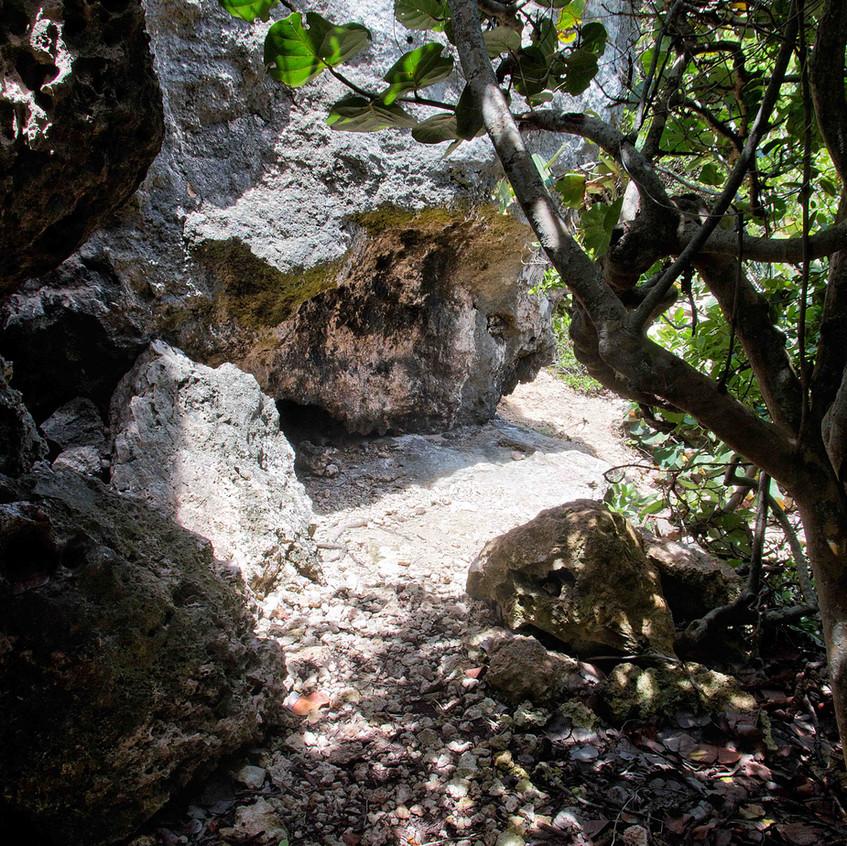 Sendero sobre la cueva