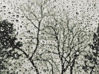 Las pisadas del insomnio o sinfonía de la incertidumbre: crónica personal del huracán María en cinco