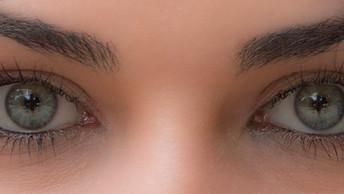Proyecto Ojos