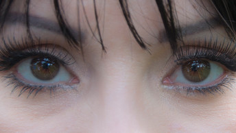 Detalles del Proyecto Ojos