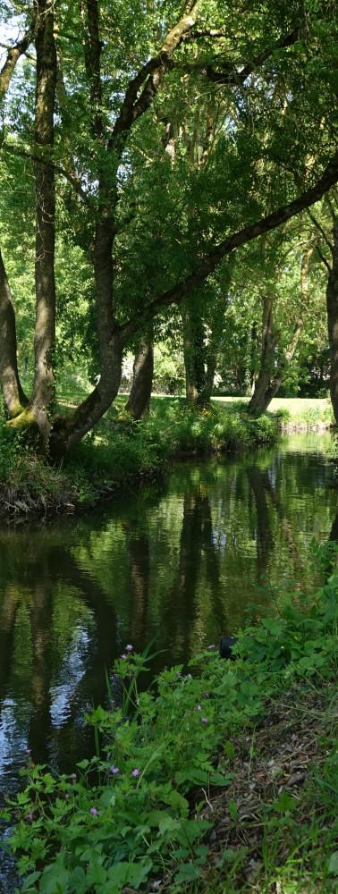 petit-parcours-peche-les-sources-du-moulin-migre.jpg