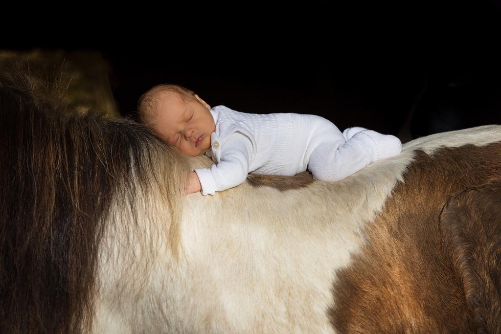 Babyfotografie Ostholstein03