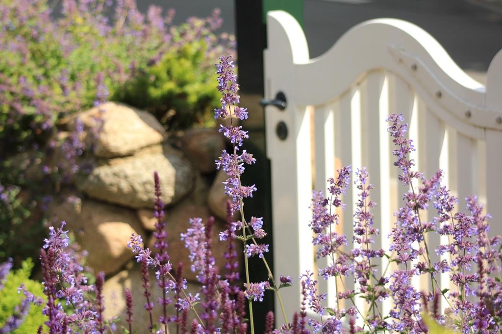 Haus und Garten01