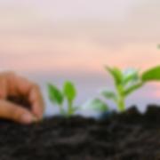csm_BioPBS_compost_420x420_NAQ_36b735a84