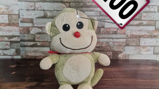 Pre loved Stuffed Toy 26