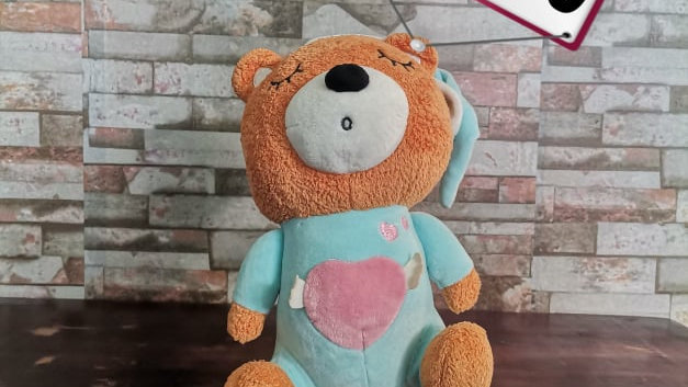 Pre loved Stuffed Toy 20