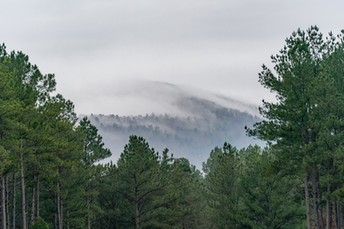 Northwoods Trails Hot Springs, Arkansas
