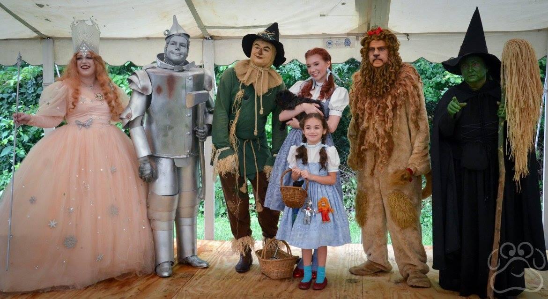 2016 Oz Fest pictures 1