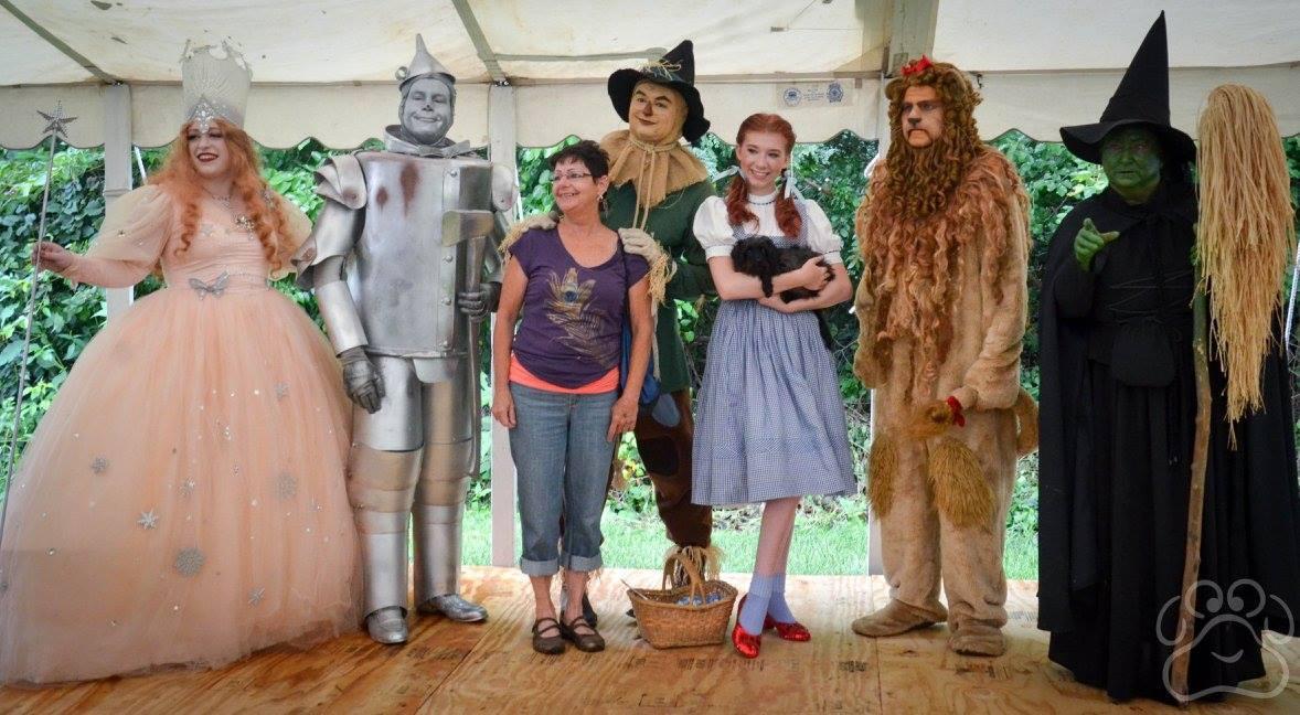 2016 Oz Fest pictures 4