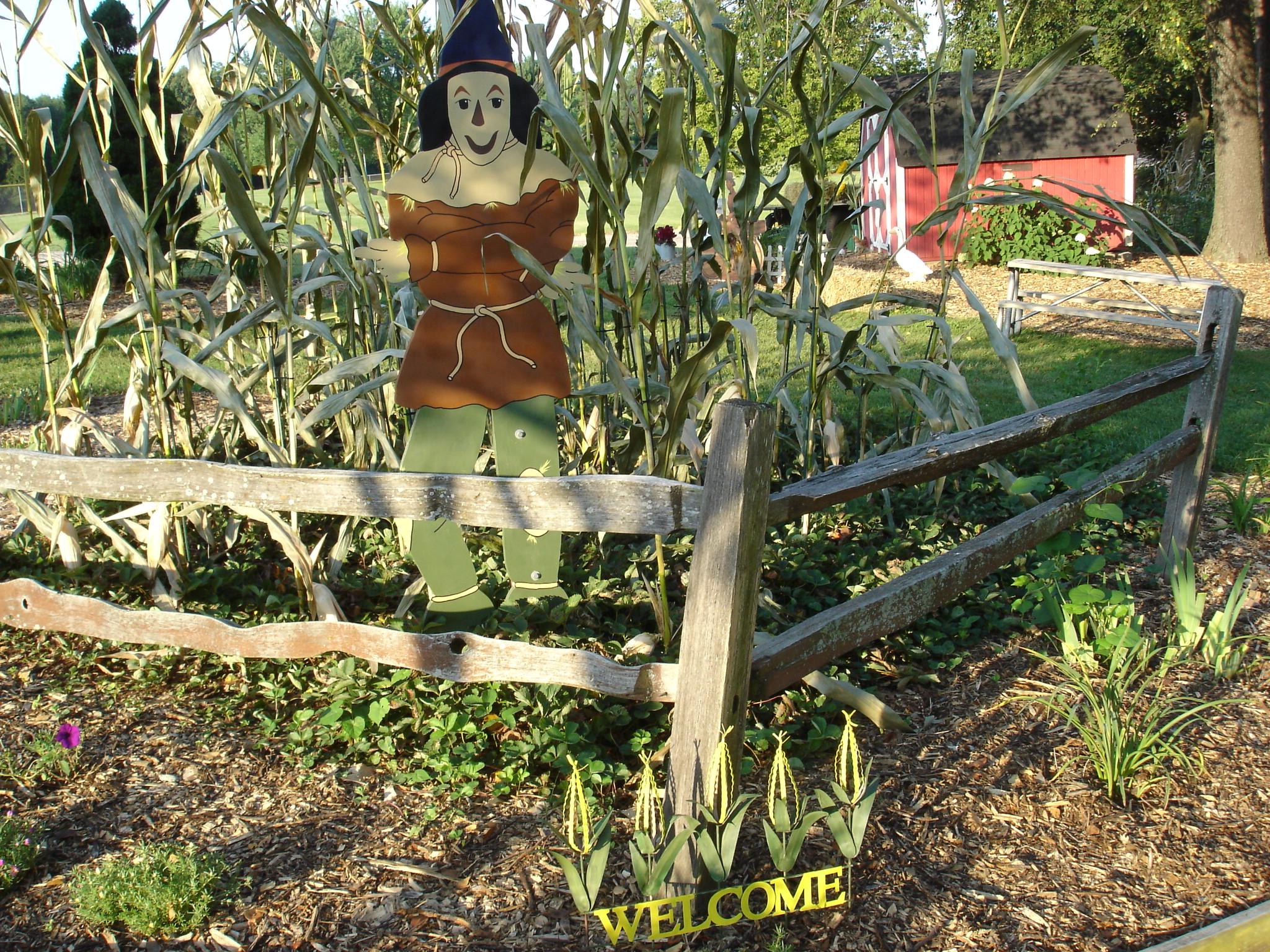 2016 New Oz Garden
