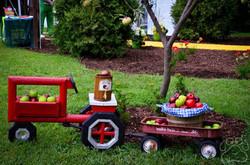 2016 Oz Fest wagon