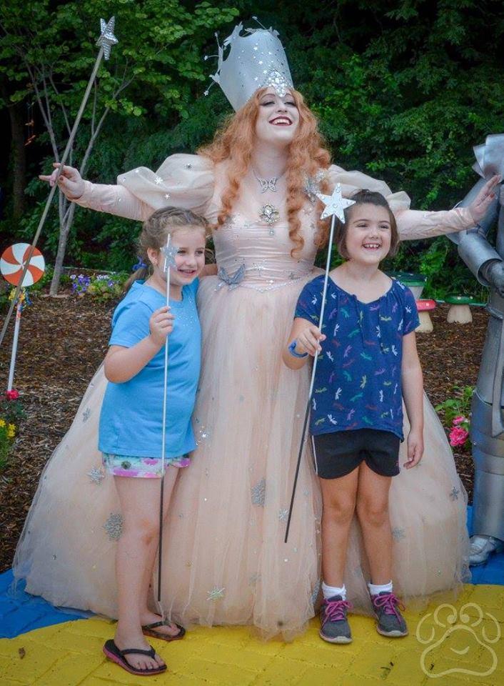 2016 Oz Fest pictures 17