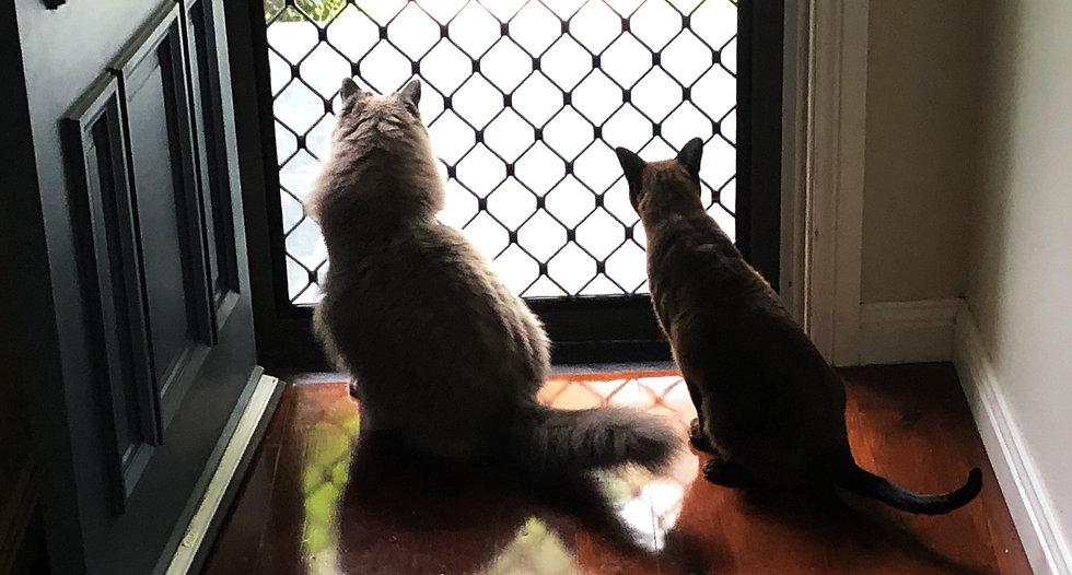 WE at front door2.jpg