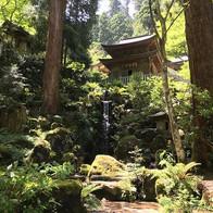 「枯山水」で知られる室町時代の庭園文化の礎となった京都府・京都市西京区のイチオシの人気スポット「西芳寺(苔寺)」の情報ページです。西芳寺(苔寺)の見どころ、ベストシーズン、アクセスのコツ、合わせて立ち寄りたい名所など観光のポイントから地図、ハイライト動画まで幅広くご案内しています。詳細はこちらからご覧ください。