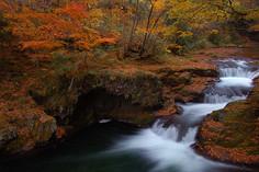 秋田県を代表する紅葉の景勝地として知られる秋田県・秋田市のイチオシの絶景スポット「岨谷峡」の情報ページです。岨谷峡の見どころ、ベストシーズン、アクセスのコツ、合わせて立ち寄りたい名所など観光のポイントから地図、ハイライト動画まで幅広くご案内しています。詳細はこちらからご覧ください。