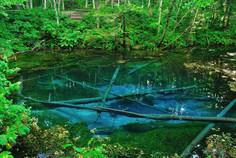 神の湖「摩周湖」の水をたたえることで知られる北海道・清里町のイチオシの絶景スポット「神の子池」の情報ページです。神の子池の見どころ、ベストシーズン、アクセスのコツ、合わせて立ち寄りたい名所など観光のポイントから地図、ハイライト動画まで幅広くご案内しています。詳細はこちらからご覧ください。