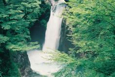 日本の滝百選のひとつに選ばれている徳島県・那賀町のイチオシの人気スポット「大釜の滝」の情報ページです。大釜の滝の見どころ、ベストシーズン、アクセスのコツ、合わせて立ち寄りたい名所など観光のポイントから地図、ハイライト動画まで幅広くご案内しています。詳細はこちらからご覧ください。