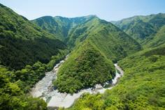 およそ200mの断崖に立つ小便小僧像で知られる徳島県・三好市のイチオシの人気スポット「祖谷渓」の情報ページです。祖谷渓の見どころ、ベストシーズン、アクセスのコツ、合わせて立ち寄りたい名所など観光のポイントから地図、ハイライト動画まで幅広くご案内しています。詳細はこちらからご覧ください。