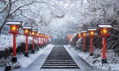 世界的な5月満月祭「ウエサク祭」を行うパワースポットの霊山として知られる京都府・京都市左京区のイチオシの人気スポット「鞍馬寺」の情報ページです。鞍馬寺の見どころ、ベストシーズン、アクセスのコツ、合わせて立ち寄りたい名所など観光のポイントから地図、ハイライト動画まで幅広くご案内しています。詳細はこちらからご覧ください。