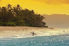 オアフ島、マウイ島、ハワイ島、カウアイ島のハワイ4島をカジュアル船「プライドオブアメリカ号」で巡るハワイ4島クルーズ旅行の情報ページです。客船情報からスケジュールの詳細、寄港地、地図、ハイライト動画まで幅広くご案内しています。詳細はこちらからご覧ください。