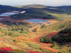 「カムイミンタラ(神々の宿る庭)」として知られる北海道・旭川市のイチオシの絶景スポット「旭岳・沼の平」の情報ページです。旭岳・沼の平の見どころ、ベストシーズン、アクセスのコツ、合わせて立ち寄りたい名所など観光のポイントから地図、ハイライト動画まで幅広くご案内しています。詳細はこちらからご覧ください。