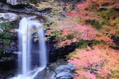 日本の滝百選のひとつに選ばれている徳島県・那賀町のイチオシの人気スポット「大轟の滝」の情報ページです。大轟の滝の見どころ、ベストシーズン、アクセスのコツ、合わせて立ち寄りたい名所など観光のポイントから地図、ハイライト動画まで幅広くご案内しています。詳細はこちらからご覧ください。