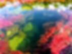 世界一美しい川として知られるコロンビア・シエラ デ ラ マカレナ国立自然公園のイチオシの絶景スポット「カーニョ・クリスタレス」の情報ページです。カーニョ・クリスタレスの見どころ、ベストシーズン、アクセスのコツ、合わせて立ち寄りたい名所など観光のポイントから地図、ハイライト動画まで幅広くご案内しています。詳細はこちらからご覧ください。