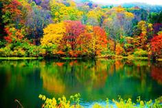 福島県のシンボル「会津磐梯山」の北側で神秘的な輝きを見せる湖沼群として知られる福島県・裏磐梯のイチオシの人気スポット「裏磐梯・五色沼」の情報ページです。裏磐梯・五色沼の見どころ、ベストシーズン、アクセスのコツ、合わせて立ち寄りたい名所など観光のポイントから地図、ハイライト動画まで幅広くご案内しています。詳細はこちらからご覧ください。