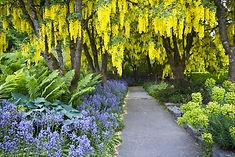 およそ4万本の桜の木が一斉に咲き誇るカナダ・バンクーバーのイチオシの祭典「花の祭典」の情報ページです。花の祭典の見どころ、日程、楽しみ方、合わせて立ち寄りたい名所など観光のポイントから地図、ハイライト動画まで幅広くご案内しています。詳細はこちらからご覧ください。