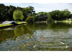 徳川御三家筆頭の尾張徳川家の邸宅と庭園址として知られる愛知県・名古屋市のイチオシの人気スポット「徳川園」の情報ページです。徳川園の見どころ、ベストシーズン、アクセスのコツ、合わせて立ち寄りたい名所など観光のポイントから地図、ハイライト動画まで幅広くご案内しています。詳細はこちらからご覧ください。