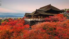 およそ1200年間にわたり日本の古都・京都の街と人々の暮らしを見守り続けてきた京都府・京都市東山区のイチオシの人気スポット「清水寺」の情報ページです。清水寺の見どころ、ベストシーズン、アクセスのコツ、合わせて立ち寄りたい名所など観光のポイントから地図、ハイライト動画まで幅広くご案内しています。詳細はこちらからご覧ください。