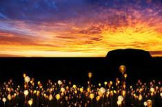 オーストラリアのシンボルとして知られるオーストラリア・エアーズロックのイチオシのイルミネーションショー「ウルル フィールドオブライト」の情報ページです。ウルル フィールドオブライトの見どころ、日程、楽しみ方、合わせて立ち寄りたい名所など観光のポイントから地図、ハイライト動画まで幅広くご案内しています。詳細はこちらからご覧ください。