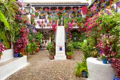 観光客が審査員!スペイン・コルドバのイチオシのコンテスト「パティオ祭り」の情報ページです。パティオ祭りの見どころ、日程、楽しみ方、合わせて立ち寄りたい名所など観光のポイントから地図、ハイライト動画まで幅広くご案内しています。詳細はこちらからご覧ください。