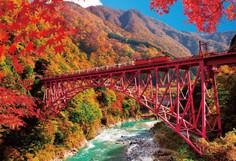トロッコ電車でしか行けない秘境として知られる富山県・黒部市のイチオシの人気スポット「黒部峡谷」の情報ページです。黒部峡谷の見どころ、ベストシーズン、アクセスのコツ、合わせて立ち寄りたい名所など観光のポイントから地図、ハイライト動画まで幅広くご案内しています。詳細はこちらからご覧ください。