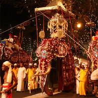 きらびやかな電飾をまとった100頭の象パレードで知られるスリランカ・キャンディのイチオシのお祭り「ペラヘラ祭り」の情報ページです。ペラヘラ祭りの見どころ、日程、楽しみ方、合わせて立ち寄りたい名所など観光のポイントから地図、ハイライト動画まで幅広くご案内しています。詳細はこちらからご覧ください。