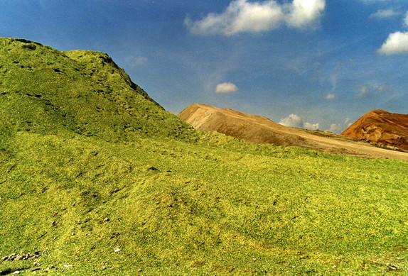 montagna011.jpg