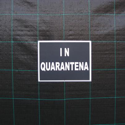 Exhibition outside 7.jpg