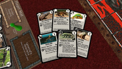 Several Lizard Cards