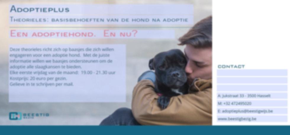 adoptieplus - flyer theorieles.jpg