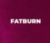 fatburn-01.png