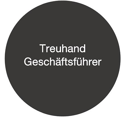 Treuhandgeschäftsführer