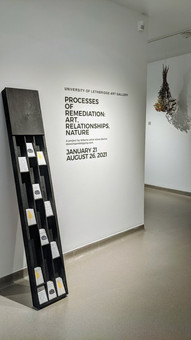 Seeds of Grassy Mountain, Installation View