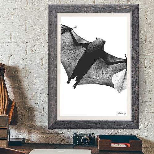 Little Brown Bat Print