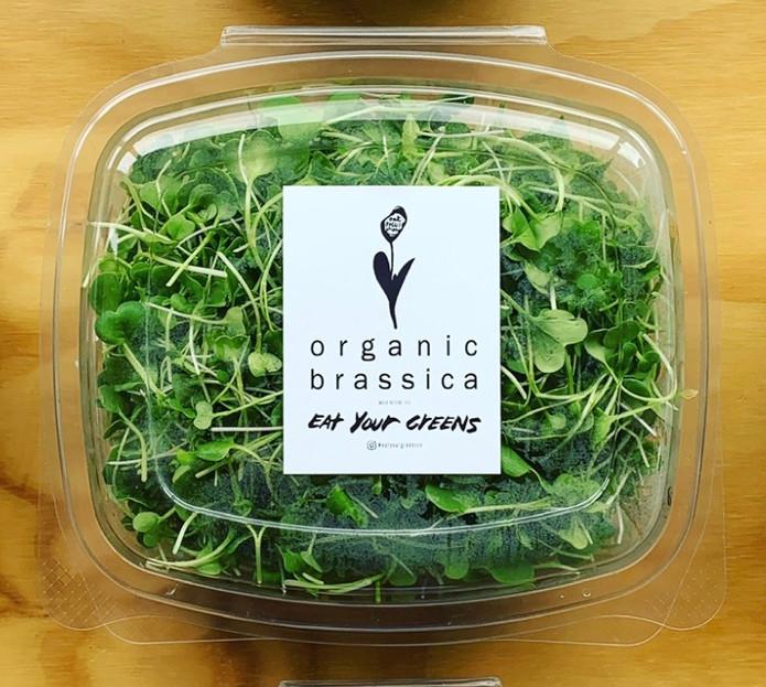 Organic Brassica Mix