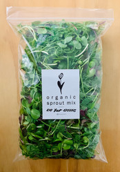 Organic Sprout Mix