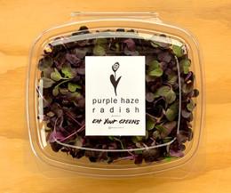 Purple Haze Radish