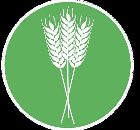 logo_gdv_2.png