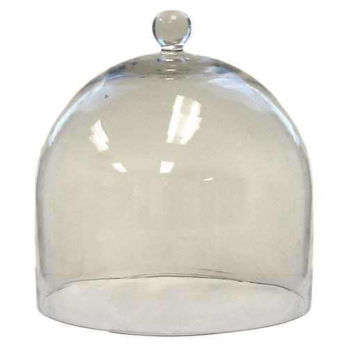 Glass Dome (Large)