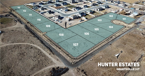Hunter Estates Bird Eye.png