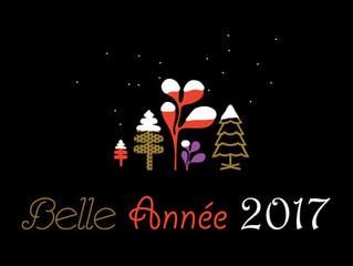 Belle et douce année 2017 !